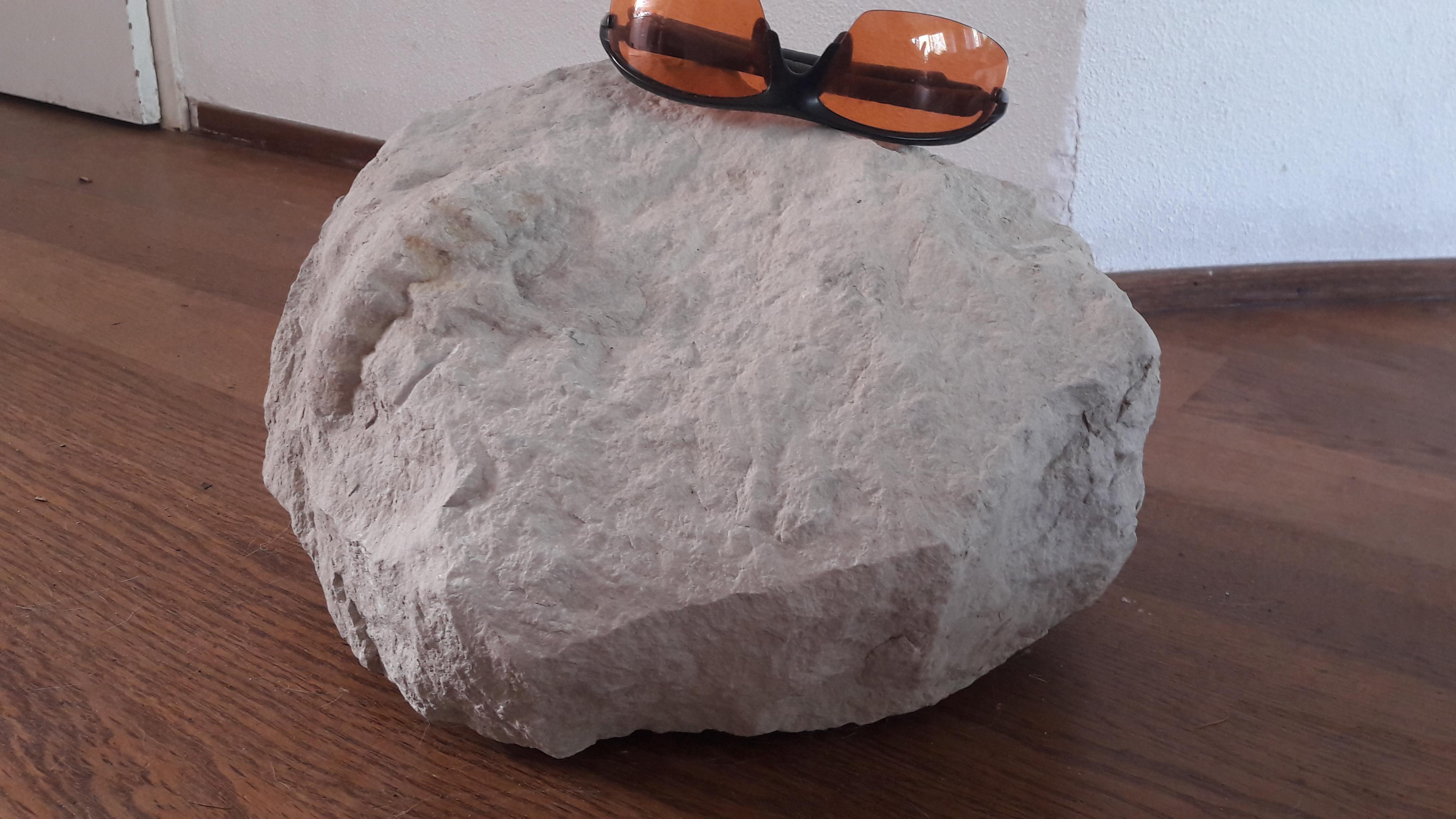 kalkblok uit Escalles met mantelliseras